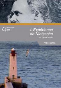 Experience nietzsche (l') - dvd