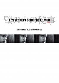 Les secrets derriere le mur - dvd