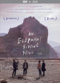 An elephant sitting still - combo 2 dvd + blu-ray