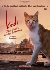 Kedi - des chats et des hommes - dvd