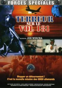 Terreur sur le vol 181 - dvd