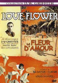 La fleur d'amour - dvd  collection d.w griffith