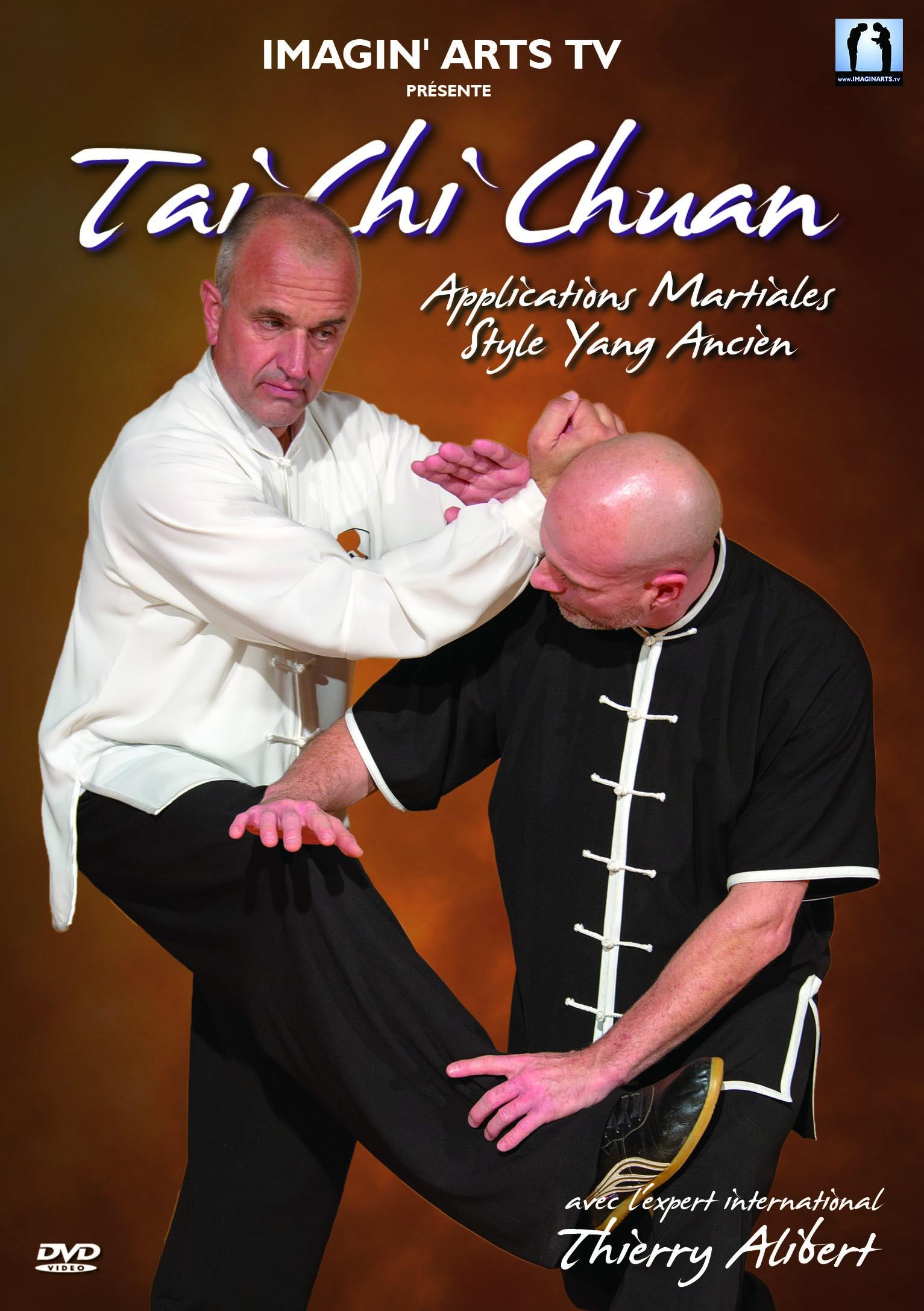 Tai chi chuan - applications martiale style yang ancien - dvd