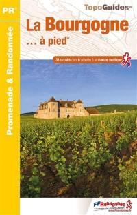 La Bourgogne... à pied