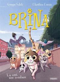 Brina, Un ami, une aventure
