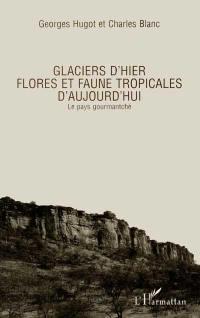 Guides des milieux naturels du Burkina-Faso. Volume 1, Glaciers d'hier