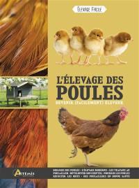 L'élevage des poules