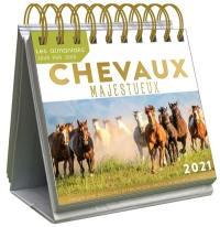 Chevaux majestueux 2021