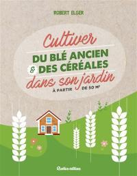 Cultiver du blé ancien & des céréales dans son jardin à partir de 50 m2