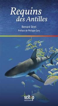 Requins des Antilles
