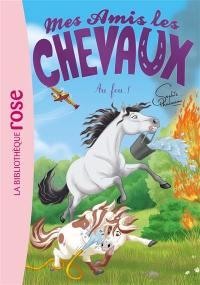 Mes amis les chevaux. Vol. 30. Au feu !