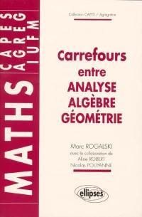 Carrefours entre analyse, algèbre, géométrie