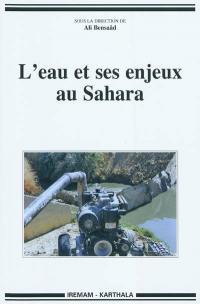 L'eau et ses enjeux au Sahara