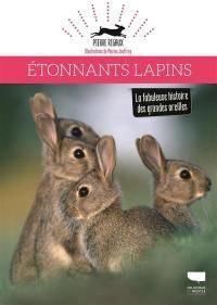 Etonnants lapins