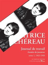 Journal de travail. Volume 1, 1963-1968