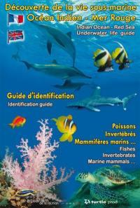 Découverte de la vie sous-marine