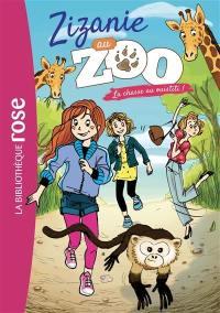 Zizanie au zoo. Vol. 4. La chasse au ouistiti !