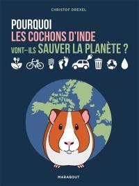 Pourquoi les cochons d'Inde vont-ils sauver la planète ?