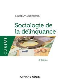 Sociologie de la délinquance