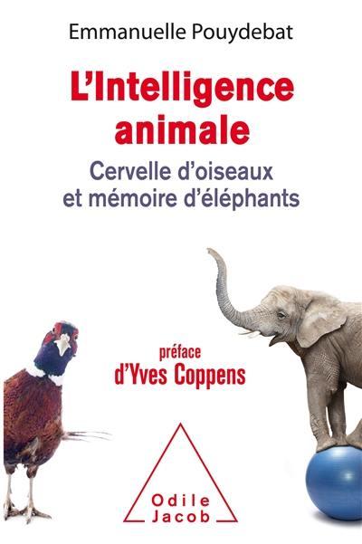 L'intelligence animale : cervelle d'oiseaux et mémoire d'éléphants