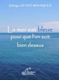 La mer est bleue pour que l'on soit bien dessus