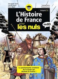 L'histoire de France pour les nuls en BD. Volume 1, La passionante aventure de la Gaule qui devient la France !