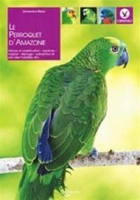 Le perroquet d'Amazonie