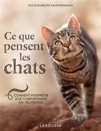 Ce que pensent les chats