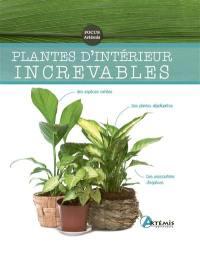 Plantes d'intérieur increvables