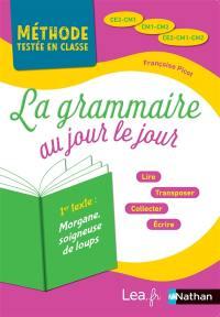 La grammaire au jour le jour, CE2-CM1, CM1-CM2, CE2-CM1-CM2