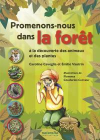 Promenons-nous dans la forêt