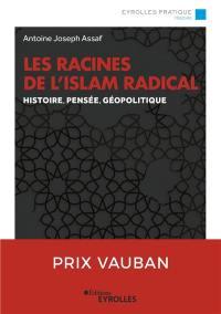 Les racines de l'islam radical