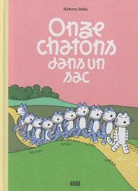Onze chatons dans un sac