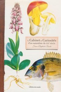 Le cabinet de curiosités d'un naturaliste du XIXe siècle