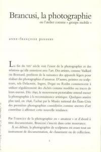 Brancusi, la photographie ou L'atelier comme groupe mobile