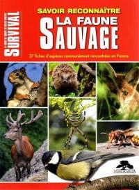 Savoir reconnaître la faune sauvage