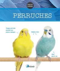 Perruches
