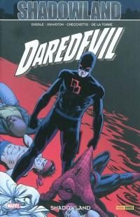 Daredevil. Vol. 22. Shadowland