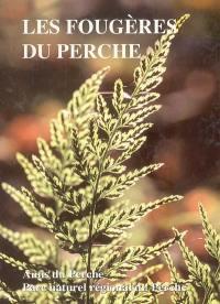 Les fougères du Perche