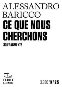 Ce que nous cherchons : 33 fragments