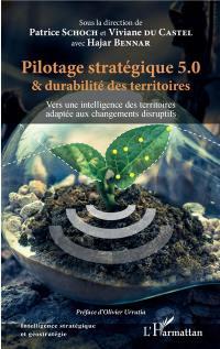 Pilotage stratégique 5.0 & durabilité des territoires