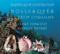 Martinique & Guadeloupe. Volume 2, Mollusques du récif corallien