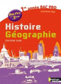 Histoire géographie 1re année bac pro 3 ans 2008 : cahier d'activités de l'élève
