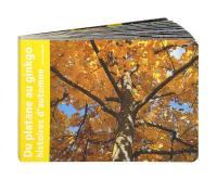 Du platane au gingko : histoires d'automne