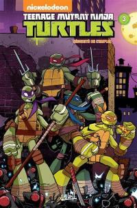 Teenage mutant ninja Turtles. Vol. 3. Sécurité de l'emploi
