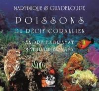 Martinique & Guadeloupe. Volume 3, Poissons du récif corallien