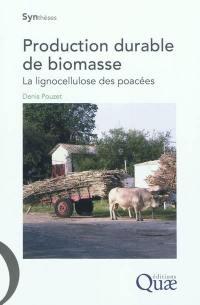 Production durable de biomasse