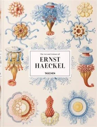The art and science of Ernst Haeckel