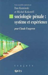 Sociologie pénale