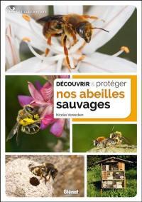 Découvrir & protéger nos abeilles sauvages